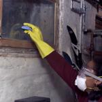 Certified Mold Technician (CMT) Online