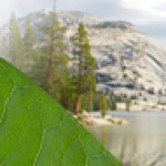 Introduction to the California Environmental Quality Act (CEQA)