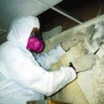 Mold Inspection and Remediation